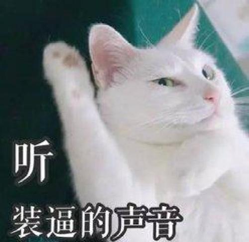 整个揭发:暨南大学微信红包封面,十分有意思!